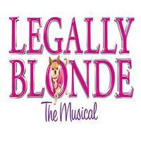 BWW TV UK: Opening Night at LEGALLY BLONDE
