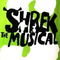 'We Plan to Monetize Shrek The Musical in Any Number of Ways' Says DreamWorks