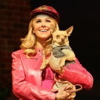 Zakrin, Bundy Share The Spotlight As Elle In TPAC's LEGALLY BLONDE 6/15-6/29