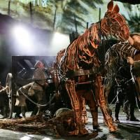 Photo Flash: WAR HORSE Continues 'Galloping' At New London Theatre