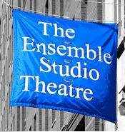 Ensemble Studio Theatre Presents PRINCESS OF WACO, Previews 1/8/2010