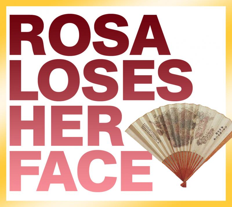 Queens Theater In The Park Presents ROSA LOSES HER FACE 12/4-13