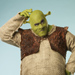 First Photos Released Of Brian d'Arcy James As Shrek