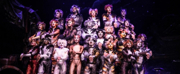 Review Roundup: CATS on Tour at the Pantages - Did the Critics Take Away a Positive Memory?