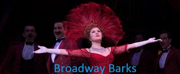Bid Now on 2 Tickets to HELLO, DOLLY! Plus Bernadette Peters' Show-Worn Merchandise, Attend Broadway Barks and More