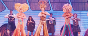 Exclusive: Tony Sheldon Performs 'I Will Survive' in PRISCILLA Australia