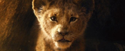Oh We Just Can't Wait! Everything We Know About THE LION KING