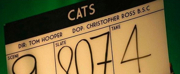 Production Has Wrapped on Tom Hooper's CATS Film