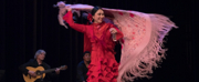 Teatro Paraguas Presents Holiday Dream Flamenco