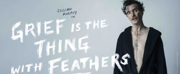 GRIEF IS THE THING WITH FEATHERS Comes to Galway and Dublin