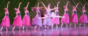 Review: NASHVILLE'S NUTCRACKER Dazzles and Delights