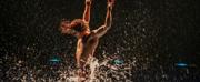 BWW Review: Cirque du Soleil's LUZIA