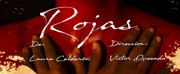 BWW Review: ROJAS at Sala Seki Sano
