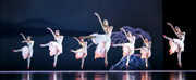 Photos: First Look at Shanghai Dance Theatre's SOARING WINGS