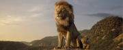 VIDEO: Disney Releases a New Trailer for THE LION KING Photo