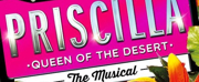 'PRISCILLA' 10th Anniversary Tour Finds Full Company