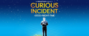 THE CURIOUS INCIDENT OF THE DOG IN THE NIGHT-TIME Will Tour 60 Secondary Schools Across Th Photo