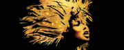 TINA � THE TINA TURNER MUSICAL Cast Recording Available Now