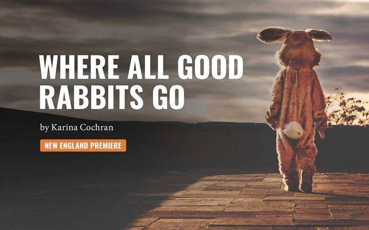 BWW Review: WHERE ALL GOOD RABBITS GO at Thrown Stone Theatre Company