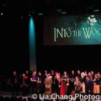 Photo Flash: Ann Harada, Raymond J. Lee, Jason Ma And More In NAAP & Prospect Theater Photo
