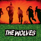 THE WOLVES Hit the Pitch in St. Louis