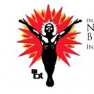 National Black Theatre Announces The I AM SOUL Workshop Productions