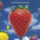 Lightning Seeds Announce 25th Anniversary Reissue of Jollification Photo