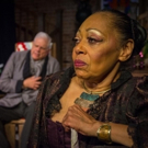 BWW Review: THE LITTLE FOXES Captivatingly Shines Spotlight on Power and Greed at Darkhorse Theatre
