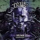 The Veer Union Salute Chester Bennington With Acoustic NUMB Cover Photo