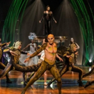 BWW Review: Cirque du Soleil AMALUNA Storytellers Fly Through the Air with the Greatest of Ease and Incredible Skill