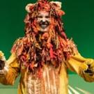 Photo Flash: THE WIZARD OF OZ Flies IntoBerkeley Playhouse! Photos