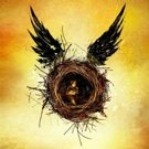 HARRY POTTER AND THE CURSED CHILD to Begin Friday Forty Ticket Lottery March 9 Photo