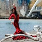 Vancouver International Flamenco Festival Announces 2018 Lineup