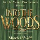 In The Wings To Present INTO THE WOODS March 16-25 At Snug Harbor Music Hall Photo