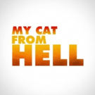 Animal Planet Announces the Return of MY CAT FROM HELL with Jackson Galaxy