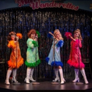 MARVELOUS WONDERETTES: DREAM ON at Farmers Alley Theatre Extended