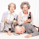 Meadow Brook Theatre Presents ARSENIC AND OLD LACE Photo