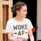 Photo Flash: First Look at Barrington Stage's WELL INTENTIONED WHITE PEOPLE Photos