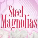 Review Roundup: STEEL MAGNOLIAS at Playhouse On Park Photo