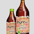 HUMM KOMBUCHA is a Delicious and Delightful Beverage that Everyone Enjoys