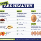 Pete and Gerry's Organic Eggs Says What the FDA Won't Say: Eggs. Are. Healthy. Photo