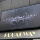 The Actors Fund to Host Screening of KING KONG Featuring Creative Team of Musical