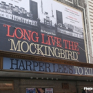 Meet the Cast of TO KILL A MOCKINGBIRD- Now in Previews! Photo