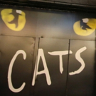 CATS On Sale At Broadway In Austin Photo