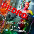 A Flock of Seagulls & Poet Jimmy D Robinson Unveil 'Pedro' Dance Remix Project Dedica Photo