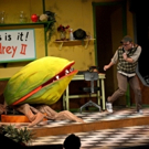 BWW Review: LITTLE SHOP OF HORRORS at Alhambra Theatre And Dining