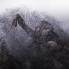 BWW Review: AVIGNON THEATRE FESTIVAL Presents KREATUR by SASHA WALTZ