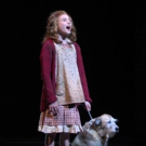 VIDEO: Check Out the New Trailer for ANNIE at Paper Mill Playhouse Photo