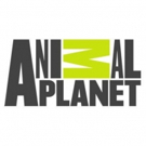 Animal Planet's VET GONE WILD Premieres Sunday, June 10