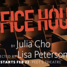 VIDEO: Hear Director Lisa Peterson Give Her Thoughts on OFFICE HOUR at Berkeley Rep! Video